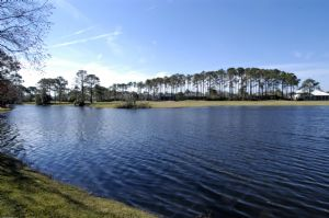 Sawgrass Ponte Vedra Beach Fl Homes